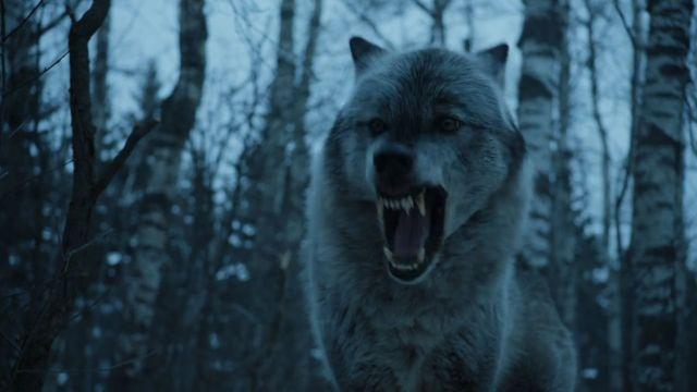 11-dire-wolf-s7-ep2-scrncap