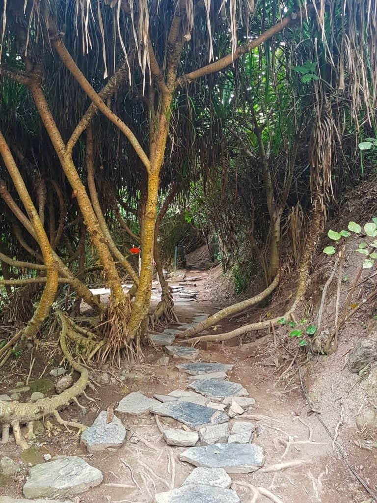Walking around Cannon Fort, Cat Ba Island, Vietnam