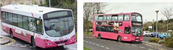 Lost found bus Newtownabbey