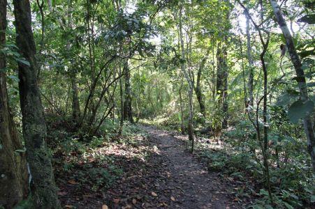 Parque Natural Metropolitano