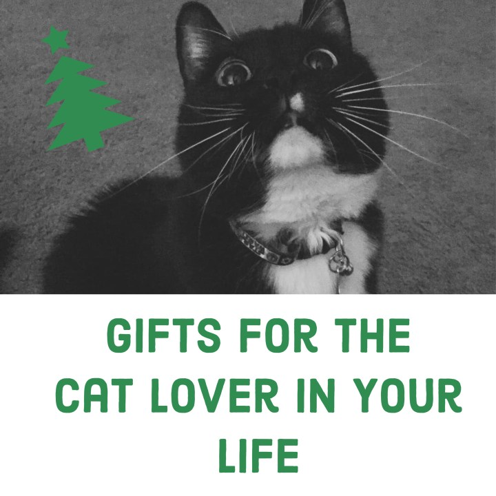 Gifts for the Cat Lover in Your Life