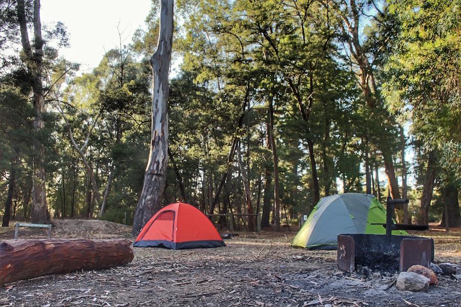 plantation-campground-halls-gap