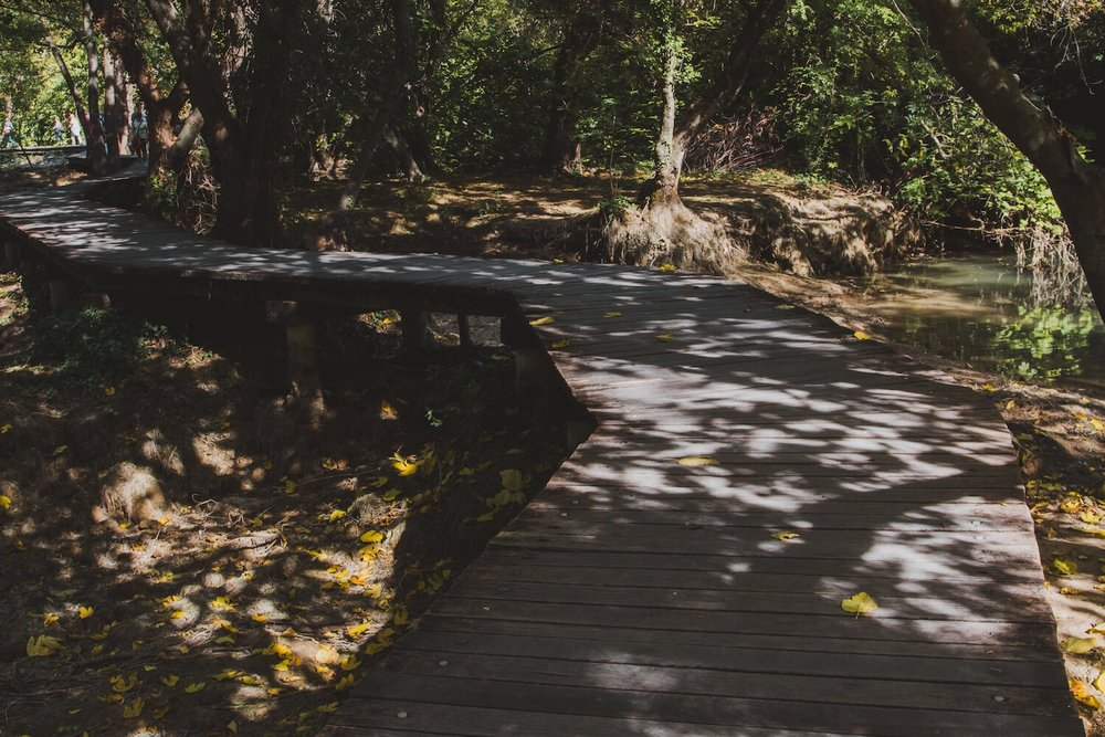 Wooden pathway through autumn trees in Krka National Park Croatia. Photo taken with Canon 650D Rebel T4i, edited in Lightroom. Get the free Krka lightroom preset with cool highlights, warm shadows, and a gentle fade.