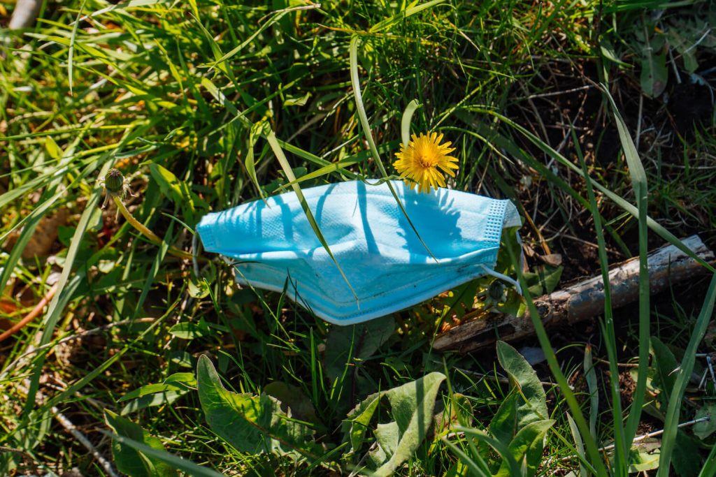Photo of a blue N95 Mask thrown to the ground on grass with a yellow flower, now Covid 19 is creating an Eco Disaster with trash.