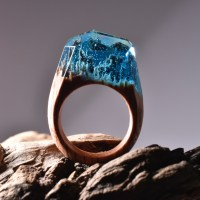 Get Lost in the Landscape Contained Inside This Ring