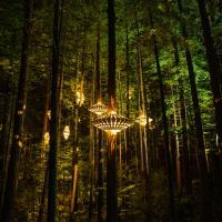 David Trubridge Lights Up New Zealand's Redwoods Forest