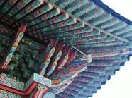South korea 224 (2)