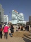 South korea 316 (2)