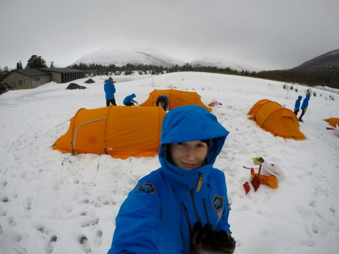 Polar 2017