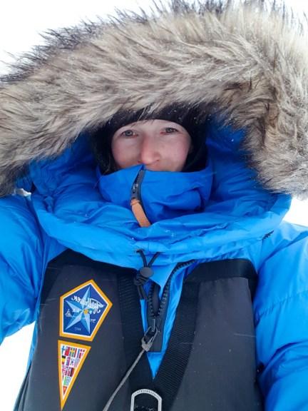 Arctische wildernis