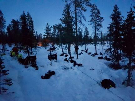 slapen onder het Noorderlicht