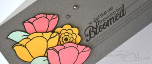 Bloomed - Detail