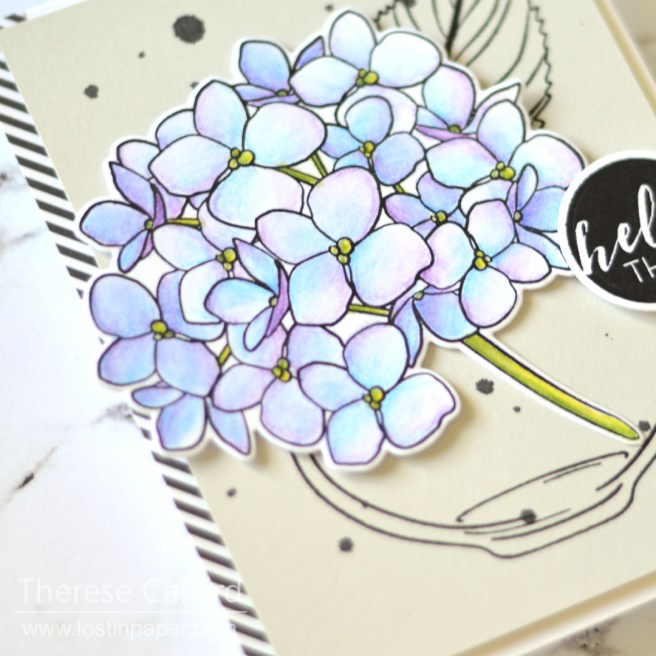 Easy Inktense Pencils on Neenah - Ellen Hutson Mondo Hydrangea - Lostinpaper (card video) 1