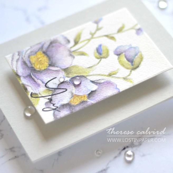 Lostinpaper - Altenew Watercolor Coloring Book - PAF Carnations (card) 1