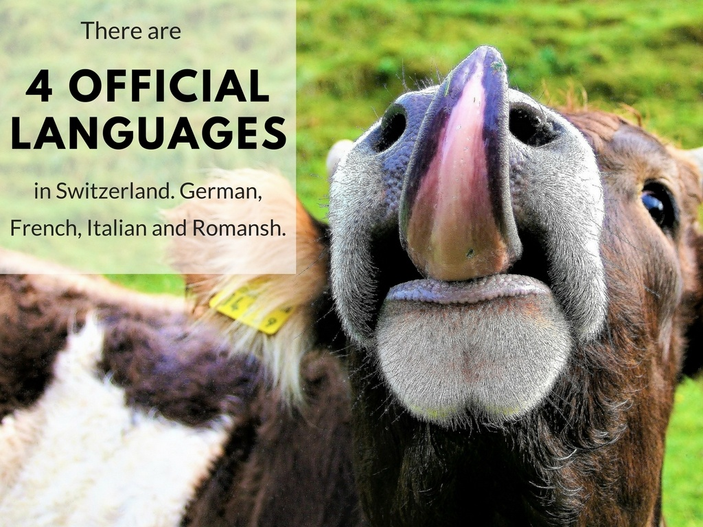 There are 4 official languages in Switzerland. German, French, Italian and Romansh.