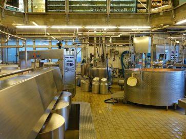 Emmentaler cheese factory