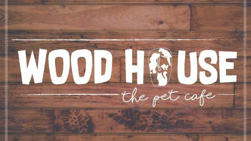 Wood House Cafe Kolkata | Furr – pect Date With Your Pet