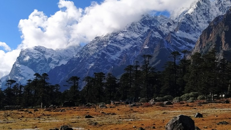 Chasing Snow At Sikkim