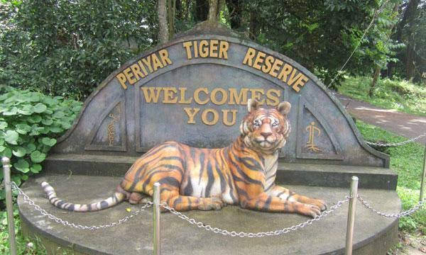 Periyar National Park (Thekkady)
