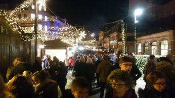 Mainz (14)