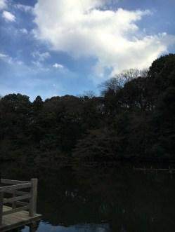 Harajuku (27)