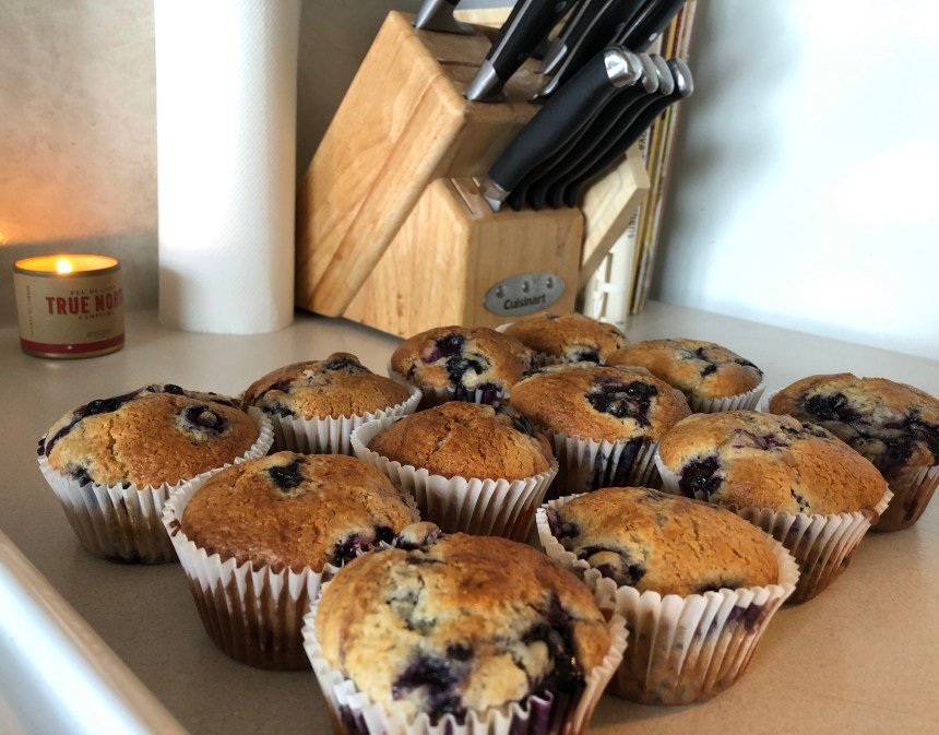 baking delicious blueberry muffins