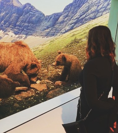 museum is a great activity. girl looking at bears