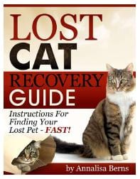Lost Cat Recovery Guide
