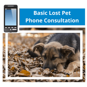 Basic Phone Consultation