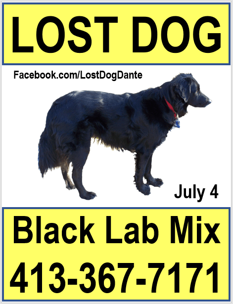lost pet poster templates