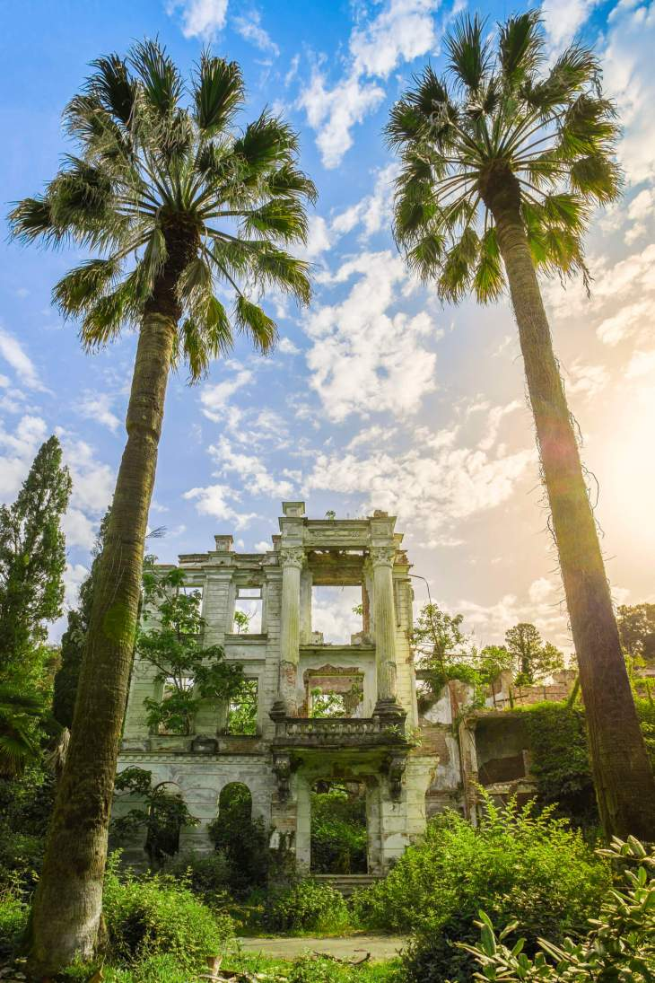 tropical palace – picture
