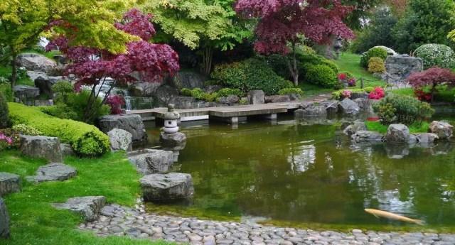 I Kyoto Gardens sono una parte di Holland Park donata dalla camera di commercio giapponese nel 1991 per sancire l'amicizia con la Gran Bretagna. Vi è un laghetto con le carpe koi ed è facile vedere i pavoni in questa zona del parco