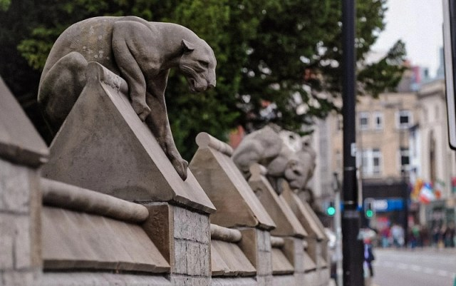 Il muro degli animali a Cardiff, una delle cose inusuali da fare a Cardiff