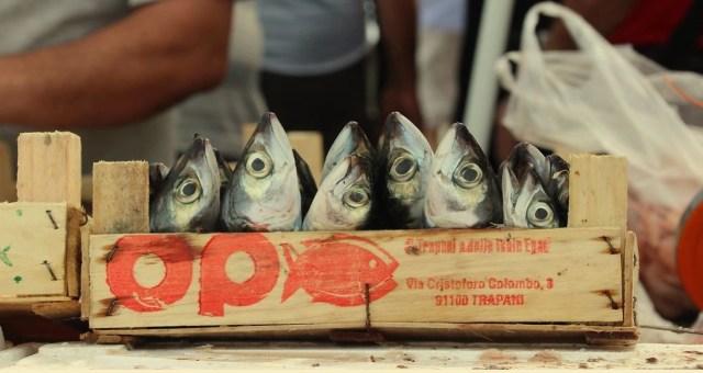dieci cose da fare a trapani: mercato del pesce