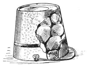 bucket with coals