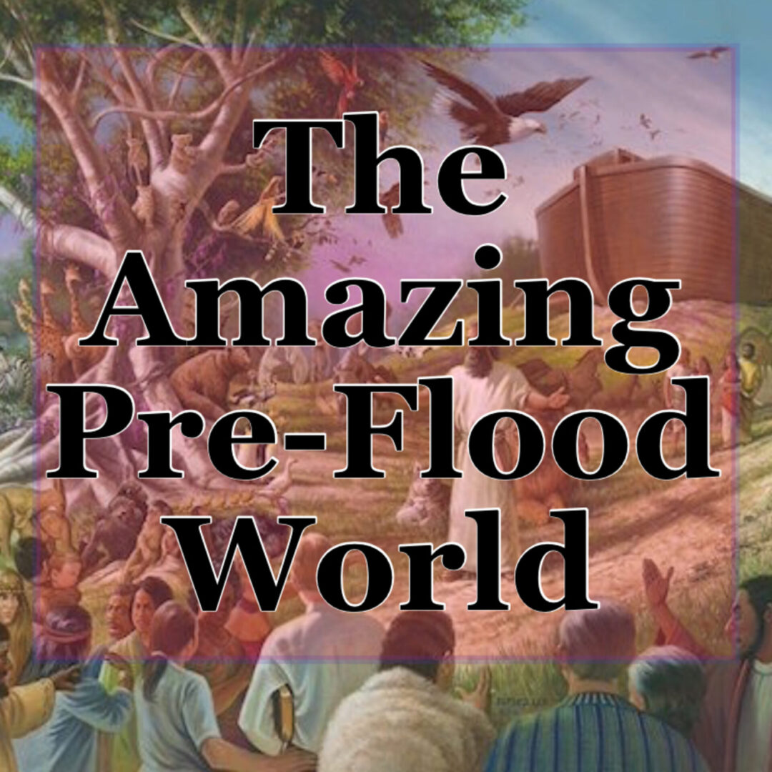 The Mysterious and Amazing Pre-Flood World