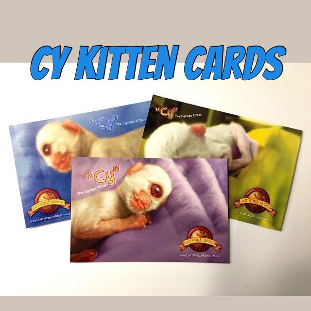 cy postcards