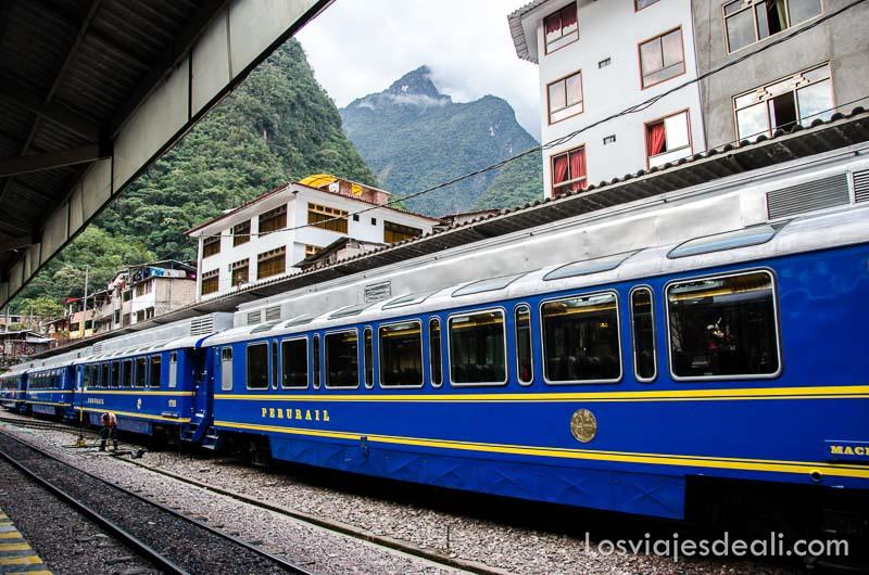 tren de vagones azules en la estación de aguas calientes