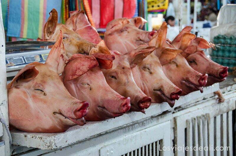 cabezas de cerdo alineadas en un puesto del mercado de cuzco