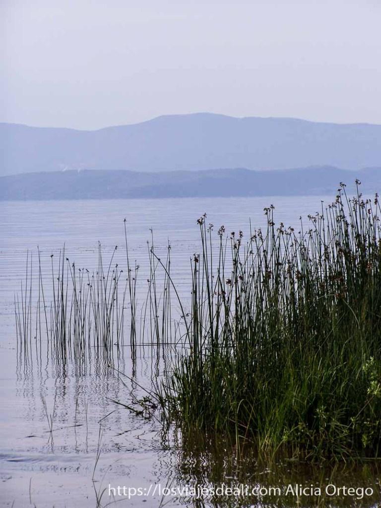 juntos adentrándose en el agua de uno de los lagos de etiopía