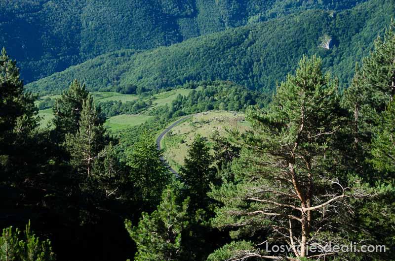 carretera en los pirineos rodeada de bosques