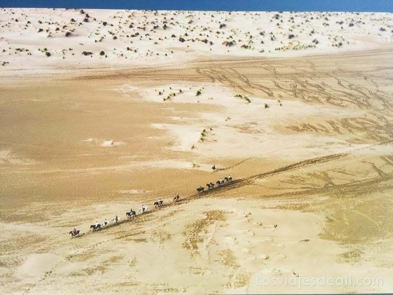 fotografía de dron de un arenal con una fila de camellos cruzándolo