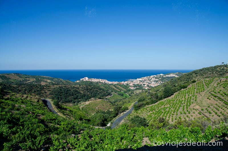 vistas de banyuls en la costa desde los pirineos con campos de viñas delante