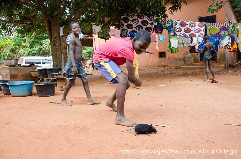 niños jugando con una rata de peluche de color negro en la tierra roja de abomey en benin