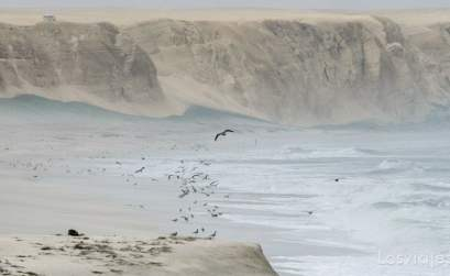 playa de paracas