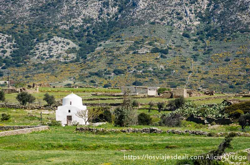 ermita blanca en un campo muy verde senderismo y arqueología en la isla de naxos