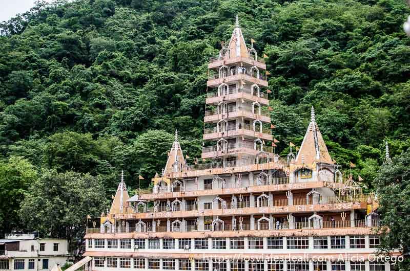 templo con 11 plantas las últimas en una torre en rishikesh