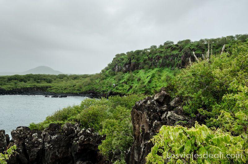 cerro tijeretas en isla San Cristóbal