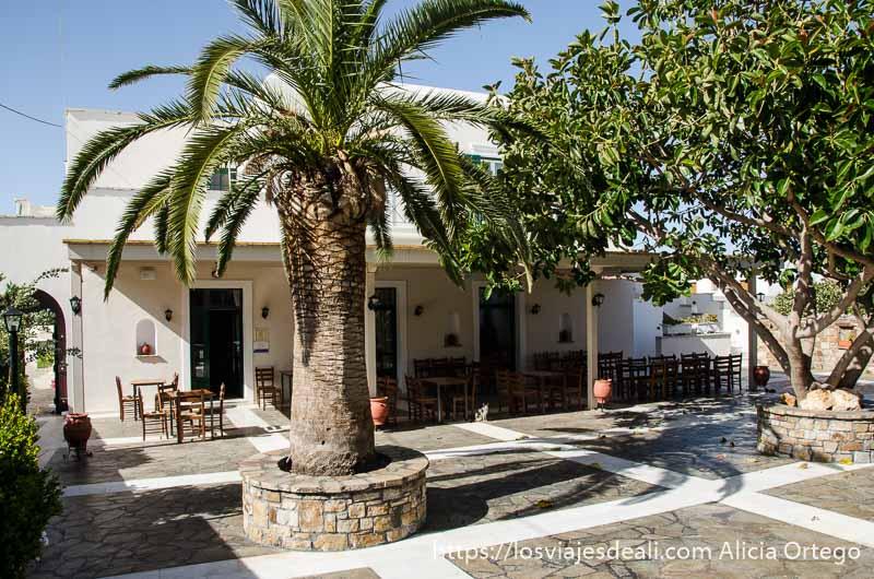 restaurante en pueblo de naxos gastronomía griega