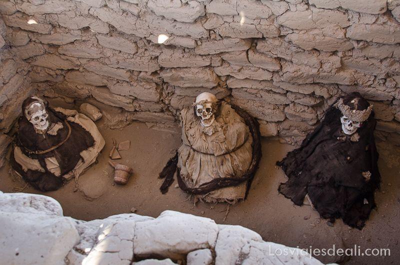 momias de chauchilla grupo